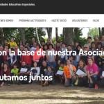 Desarrollo nueva web para la Asociación AMPNEE